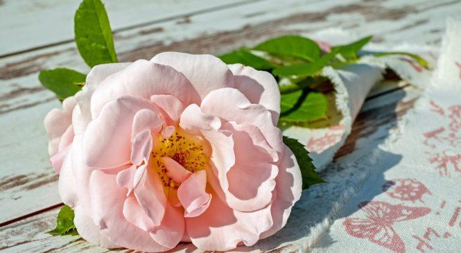 Как да подобрим бизнеса си, използвайки приятни аромати?